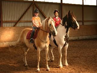 pferd zunge orange